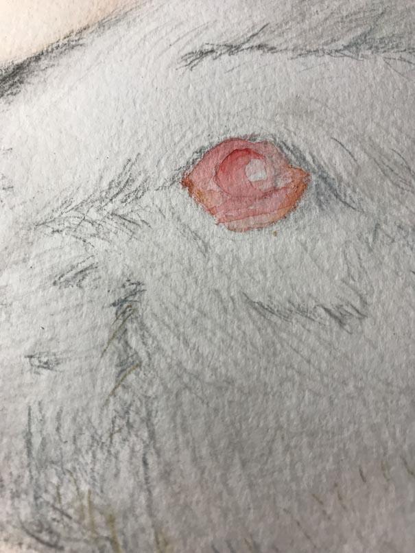 瞳の描き始め