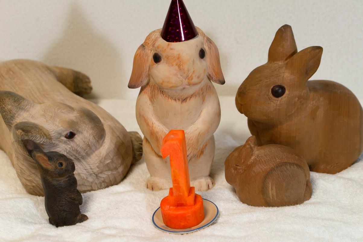 おだんご一歳のお誕生日!