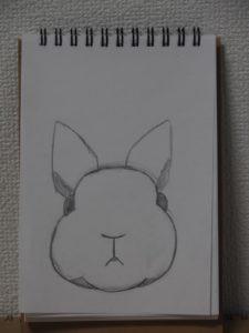 うさぎの簡単な描き方