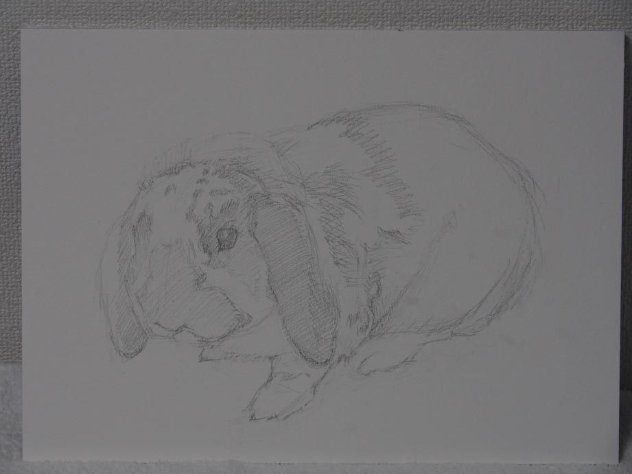 鉛筆で下描き