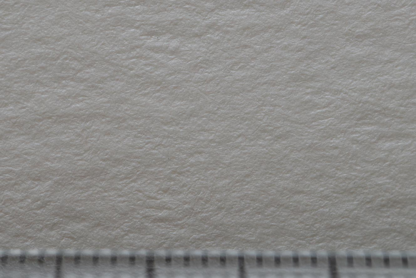 アルビレオ水彩紙拡大